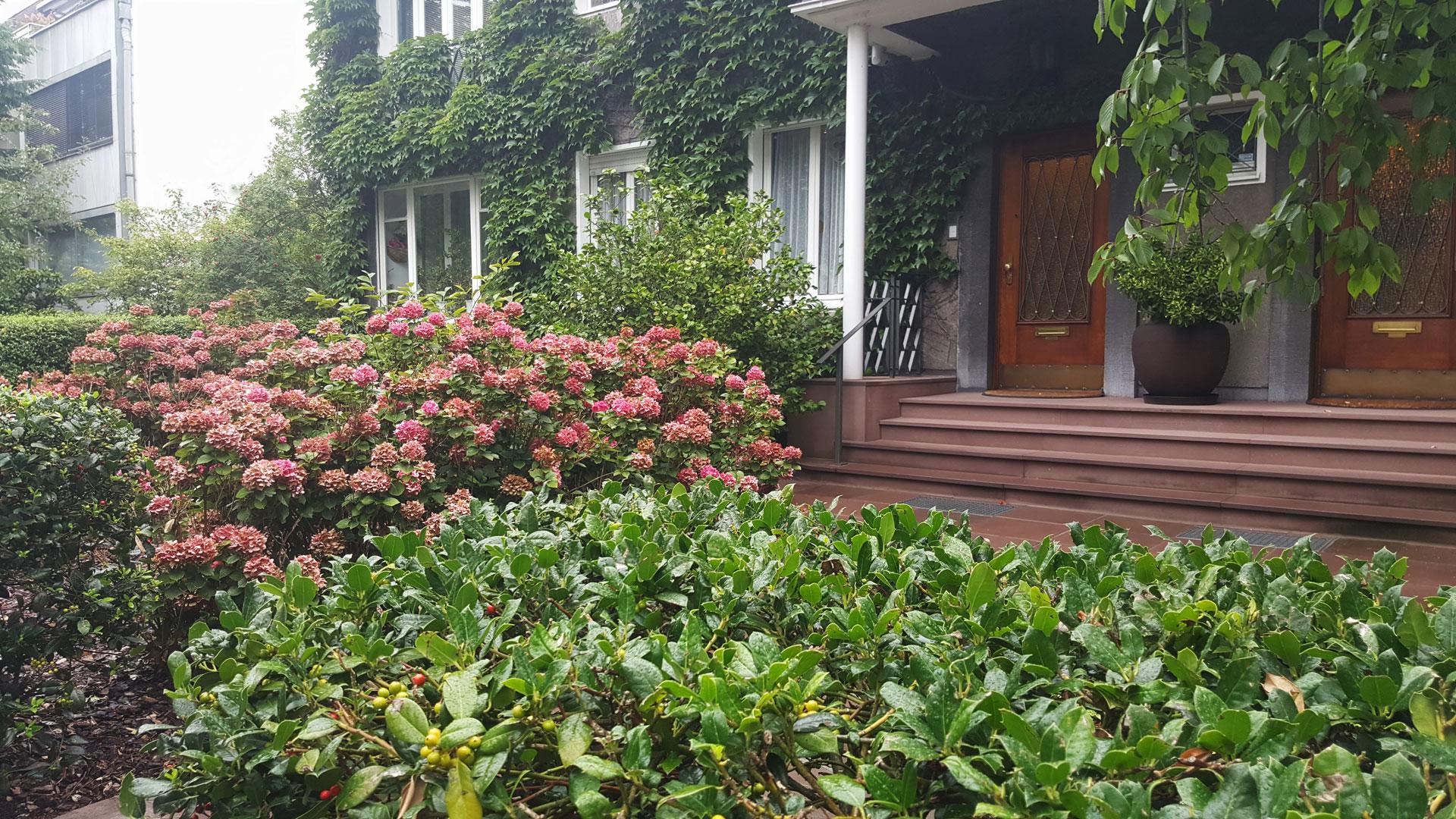 Der Vorgarten als halböffentlicher Raum