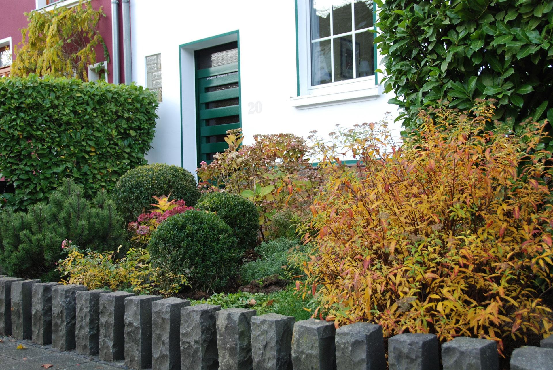 abwechslungsreich gestalteter Vorgarten