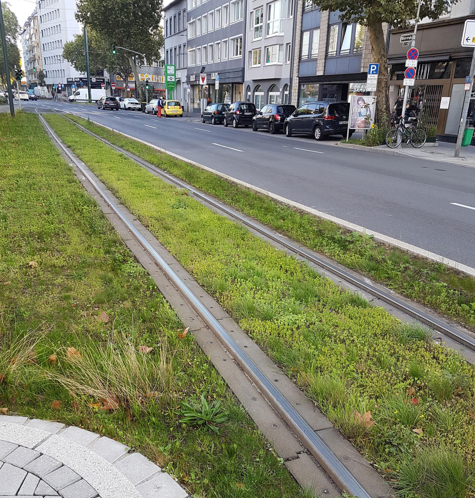 Grüne Bahntrasse