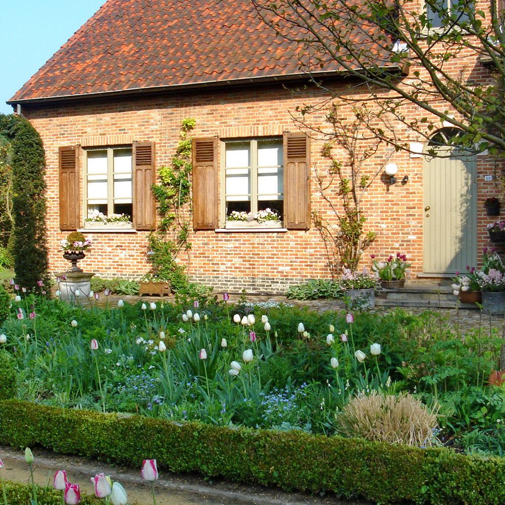 Ein grüner Vorgarten